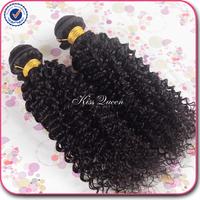 5A grade virgin hair brazilian kinky curly virgin hair 2 pcs lot free shipping virgin brazilian hair human hair weave no tangle