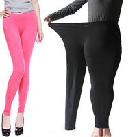 Plus Large Size Summer Fat Women Black Modal Pants Leggings  Tights For Women Clothing Multi Colour High Elastic Leggings