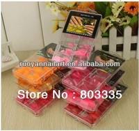Free Shipping Fashion & professional 120pcs colorfull toe nail tips