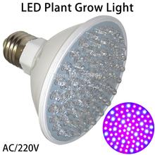 El más reciente Hidroponía Iluminación LED 4.5W E27 80 LED rojo y azul de la planta hidropónica LED Grow 220V Bombilla Envío Gratis(China (Mainland))