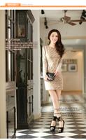 Autumn and Winter Korea Slim Pencil dress above knee  women  dresses