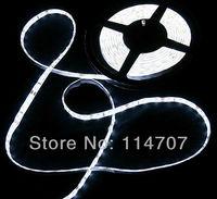 5M/Roll LED Strip IP65 Waterproof 300pcs LED SMD 3528 LED Strip Lighting 12V 60LED/M Free Shipping