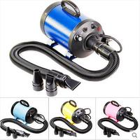 ChunZhou 200V/110V  cs-2400 pet dog variable speed pet blower Pet dryer Dog Hair Dryer