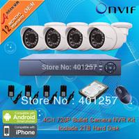 8CH H.264 HD Network NVR Kits 1.0 MegaPixel 1280*720P Resolution IR Network IP Camera CCTV System