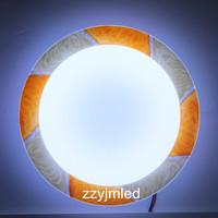 LED Ceilling Lamp Energy Save>80% Modern Design White Light 320mm