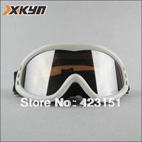 The Fashionalbe UV-protection Anti-fog Ski Goggles Dual Lens ,Free Shipping