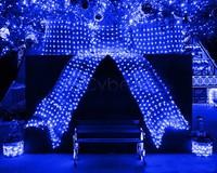 100 Led EU/220V Net String Light Christmas Lights New Year Light Wedding Christmas Decorative Lighting Blue TK1119