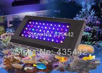 1pcs  AC85-265V 120W Dimmable led aquarium light  built 55pcs 3W  Bridgelux Rayal Blue Led Aquarium Lamp Dropshiping