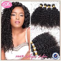 Cheap 6A brazilian virgin hair water wave 3pcs free shipping,best natural black hair weaves no tangle,soft human hair extension