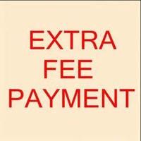 Pay Extra Fee