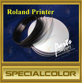 Encoder strip for roland printer