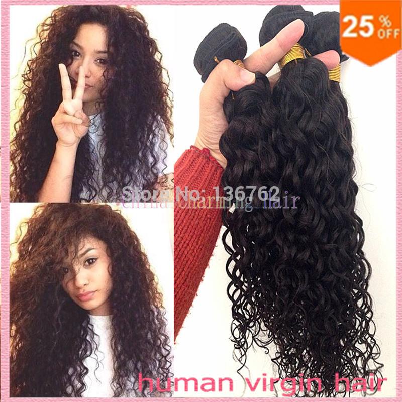 Cheap Human Hair Wet and Wavy Virgin Brazilian Hair Raw Unprocessed Brazillian Hair Loose Curly Brazilian Virgin Hair Water Wave(China (Mainland))