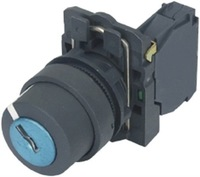 push button switch with key