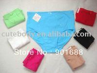 ladies` briefs  wholsale price woman garment large size