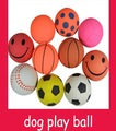 Free shipping+wholesale 20pcs/lot+Elastic ball pet toys+ dog playing  ball toy