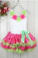 2015 Pop Colorfull Flower Rainbow Baby Tutu Skirt  with Butterfly 5 pcs/lot Baby Birthday Clothes Gift