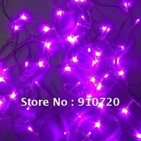 Mail Free + 1PC DC10 10M 100LED 220V String Purple Light Waterproof Energy Saving For Christmas Holiday/Wedding Party Decoration