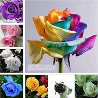 30 Kinds Colors Rose Flower Seeds, EACH COLOR 70 Seeds, Total OF 2100 Rose Flower Seeds,Free shipping+FREE GIFT FLOWER SEEDS