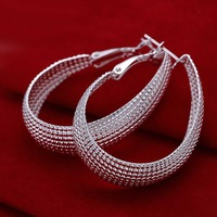 Free Shipping Wholesale Sterling 925 Silver Earring,925 Silver Fashion Jewelry Web Hoop Earring For Women SMTE064