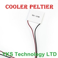 Wholesale 12V 60W TEC1-12706 Thermoelectric Cooler Peltier Hot