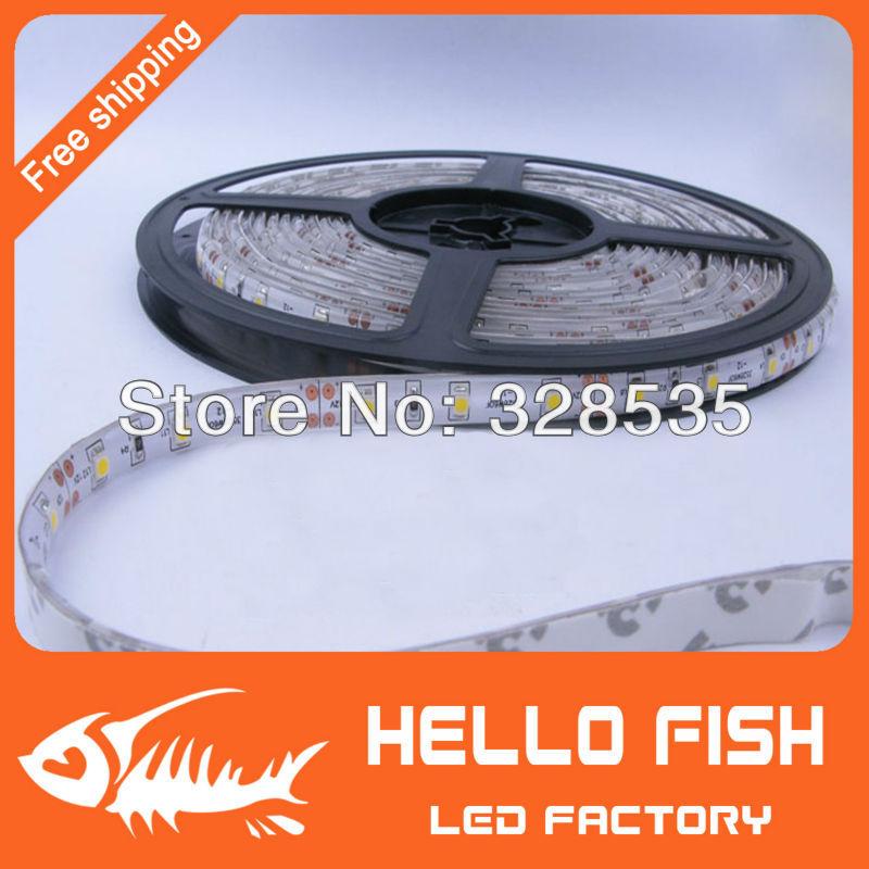 Hello Fish 5m 300LED 3528 SMD waterproof 12V flexible light 60led/m LED strip, white/warm white/blue/green/red/yellow(China (Mainland))