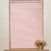 Pure color Customized PVC Curtain blinds for bedroom or washroom dodechedron blinds SSS001