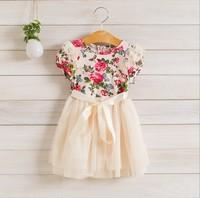 Girl  Dress   2014 Summer   Baby  Girl  Short sleeve  Lace  Flower Gauze  Silk ribbon Party  Dresses   5pcs/lot