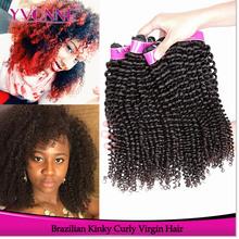 brazilian virgin hair price