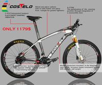 2015 COSTELO MASSA Carbon MTB Bike better LOOK 986 Bicycle complete 26er 29er bicycle mountain MTB bike Fork saddle wheels bar