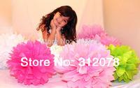 """DIY 14"""" (35cm)  Decorative Tissue Paper Pom Poms Flower Balls for Party Supplies Wedding Centerpieces Decorations,17colors"""