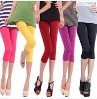 2014 New Fashion Multicolour neon leggings capris candy color elastic size pants Cropped Trousers leggings
