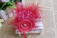 Free Shipping! 2013 New Style! 80pcs/lot  Burning flower Headband with Feather&Rhinestone Pearl combination Girls Headband