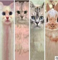 10pieces=5pairs=1lot  British fashion topshop Print Long socks cat cartoon rabbit for men and women