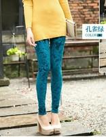 New! Korean Slim Gold Velvet Leggings Printed trousers for Female Autumn and Winter Casual Basic Pants 8 colors Free shipping