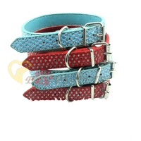 C2023 Wholesale Lots Star Point Dog Collar Red Blue Pet Products Factory Produce Accepted 42CM*2CM 8 pcs/lot