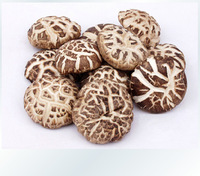Free shipping wholesale natural dried mushrooms chinese green organic Shiitake  dried food 250g/pack 8.8 ounce