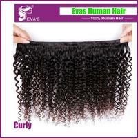 6A Unprocessed Virgin Brazilian Hair Free Shipping,Brazilian Curly Hair,Brazilian Deep Wave Curly Hair 2 Bundles Lot
