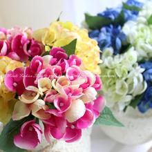 hydrangeas flower price