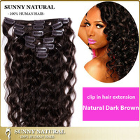 100g/120g/160g Brazilian Curly Virgin Hair Clip in Hair Extensions Natural Dark Brown Human Hair Clips on