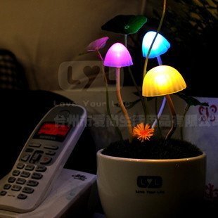 Valentine's gift Fungus Lamp,LED table lamp, mushroom lamp,Energy saving Light Freeshipping