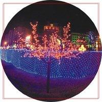 110V / 220V 1.5*1.5M 96 bulbs LED Net Lights , Christmas Garden Wedding Party Decoration , 6pcs/lot ,9 colors Mixed-lot