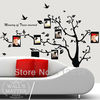 [Bruce Z. Decor]Free Shipping Vinyl Removable Wall Decor Stickers Family Photo Tree Murals Decals Stencil Art 115 x 85cm