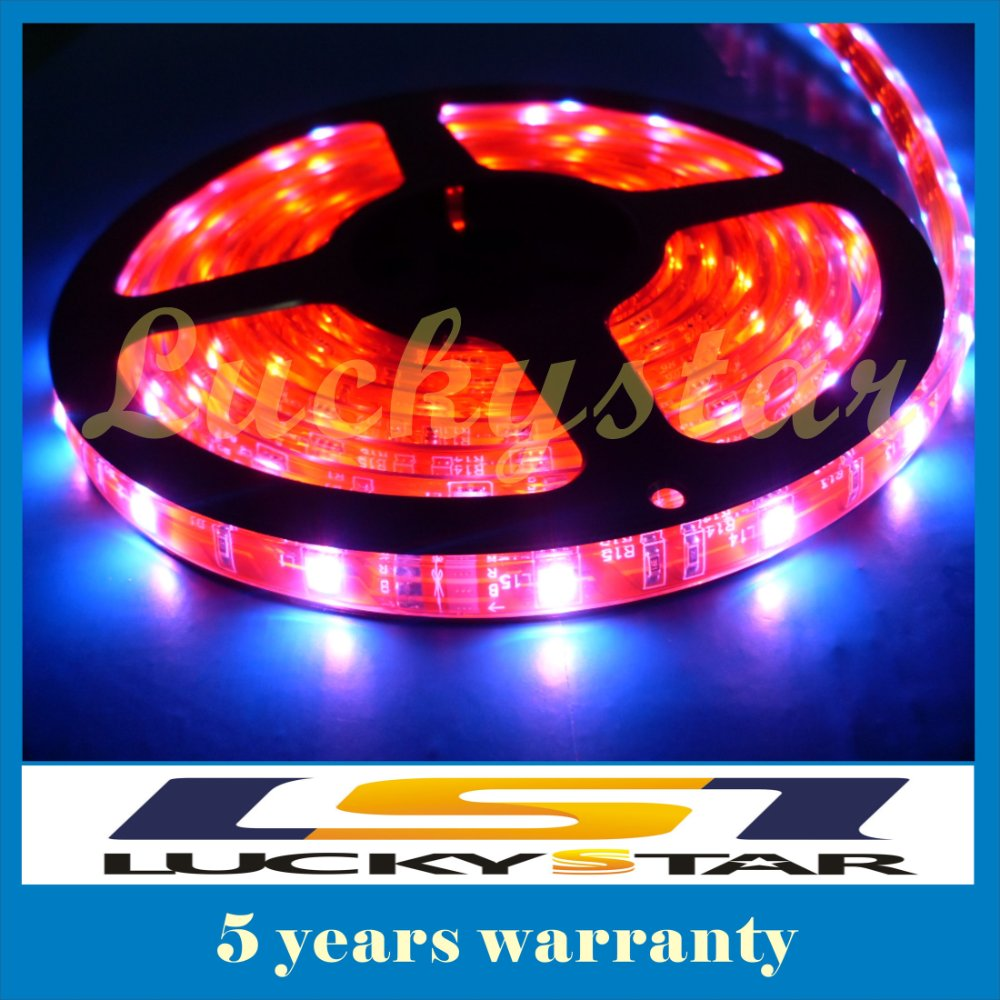 5050 60LED/M 300 5M SMD Flexible LED Strip light Waterproof white/yellow/blue/green/red DC 12V(China (Mainland))
