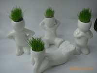 G9/novel planted with pot grass vases/Mini grass toys/grass in Ceramic bottle/Bonsai hair man plant/4 types mixed available