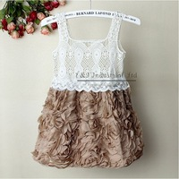 2014 New Baby Girl Dress Coffee Rose Children Lace Party Dress for Girl Princess Dresses 5PCS/LOTS GD21020-01^^EI