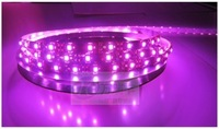 300LED/5meter Waterproof of/395-405nm UV/Purple/Violet 5050 SMD LED Flexable Strip