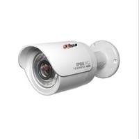 wholesale cheap   HD Waterproof Dahua 1.3 megapixel dome ip ir camera: IPC-HFW2100