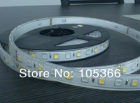 New product  360 LED  5050 flexible RGBW IP66 strip light with 3years warranty