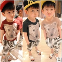 eb148 casual summer short sleeve children t shirts new 2014 3d cartoon kids t-shirt for boys clothes 5pcs/ lot free shipping