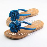 Free shiping 2014 NEW flat heel sandals fashion women dress sexy Hot sell size 35-39 sandals Women beach slippers